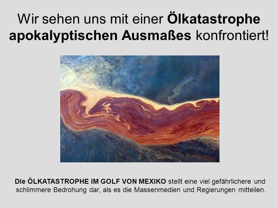 Wir sehen uns mit einer Ölkatastrophe apokalyptischen Ausmaßes konfrontiert!
