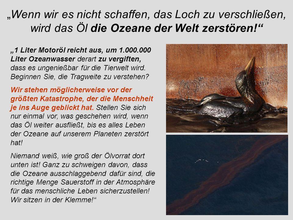 """""""Wenn wir es nicht schaffen, das Loch zu verschließen, wird das Öl die Ozeane der Welt zerstören!"""