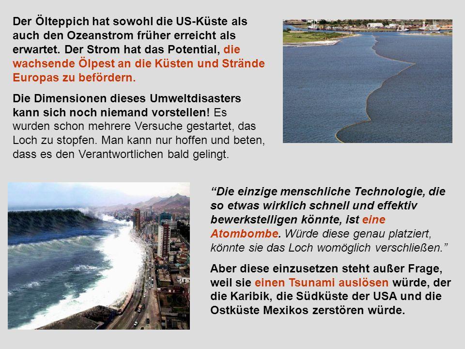 Der Ölteppich hat sowohl die US-Küste als auch den Ozeanstrom früher erreicht als erwartet. Der Strom hat das Potential, die wachsende Ölpest an die Küsten und Strände Europas zu befördern.