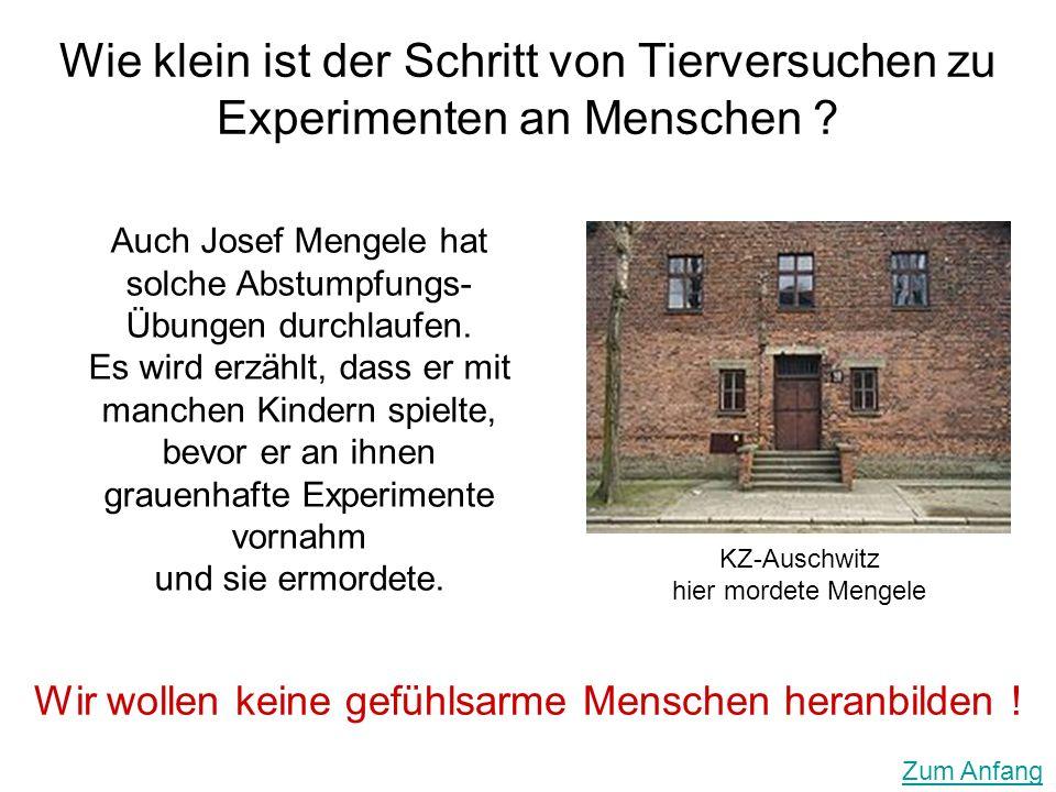 Wie klein ist der Schritt von Tierversuchen zu Experimenten an Menschen