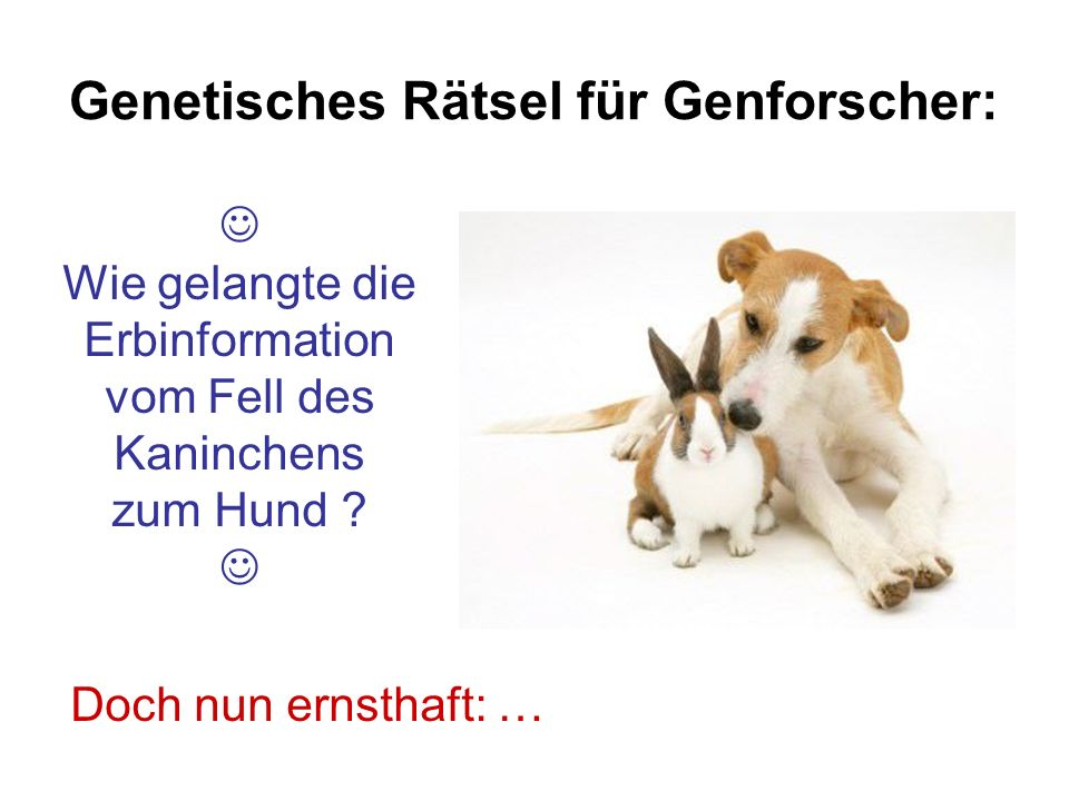 Genetisches Rätsel für Genforscher: