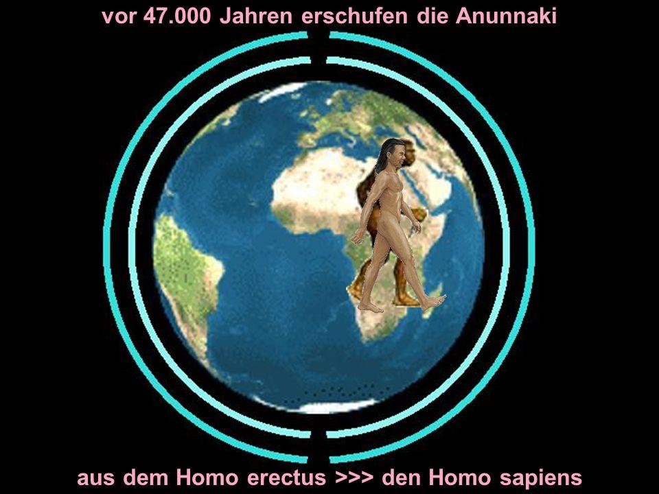 vor 47.000 Jahren erschufen die Anunnaki