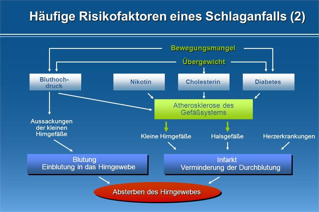 Häufige Risikofaktoren eines Schlaganfalls (2)
