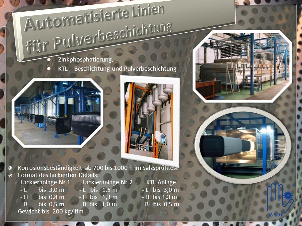 Automatisierte Linien für Pulverbeschichtung