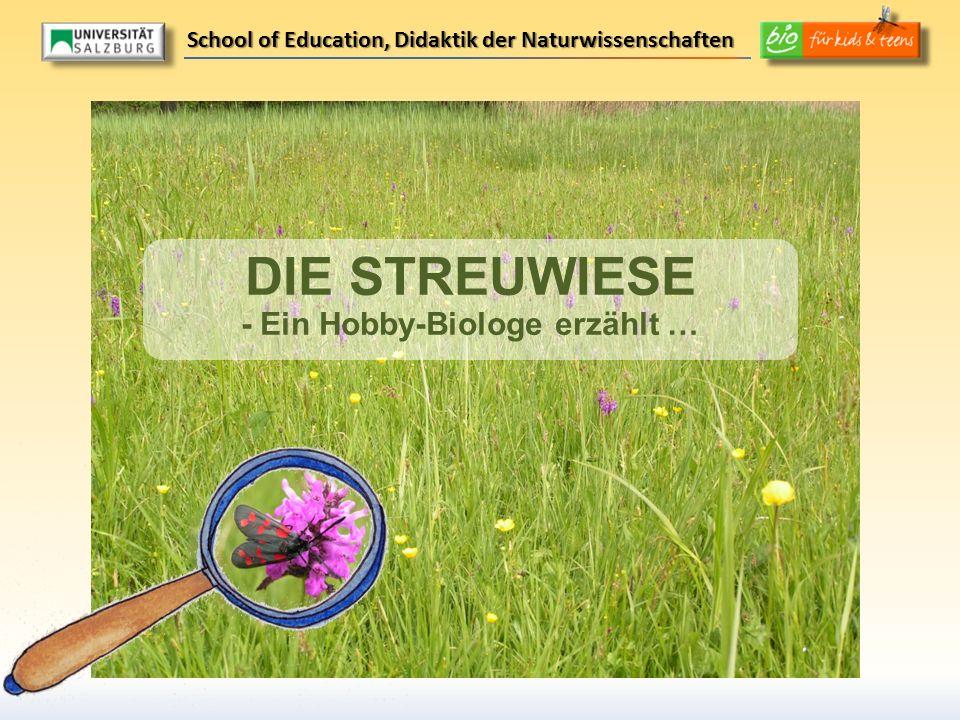 DIE STREUWIESE - Ein Hobby-Biologe erzählt …