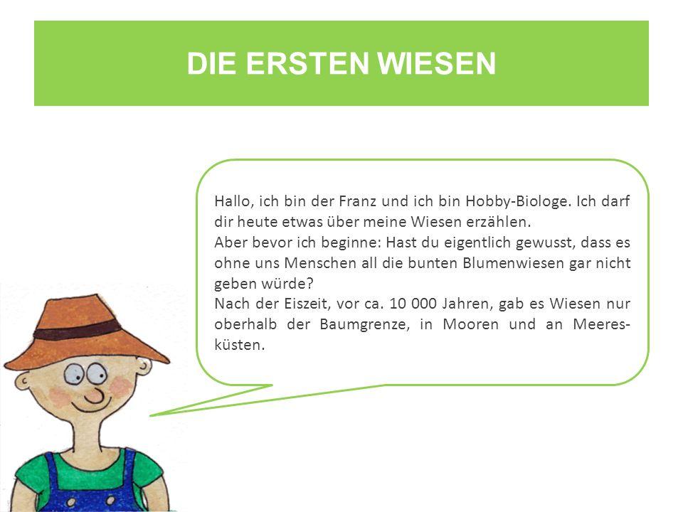 DIE ERSTEN WIESEN Hallo, ich bin der Franz und ich bin Hobby-Biologe. Ich darf dir heute etwas über meine Wiesen erzählen.