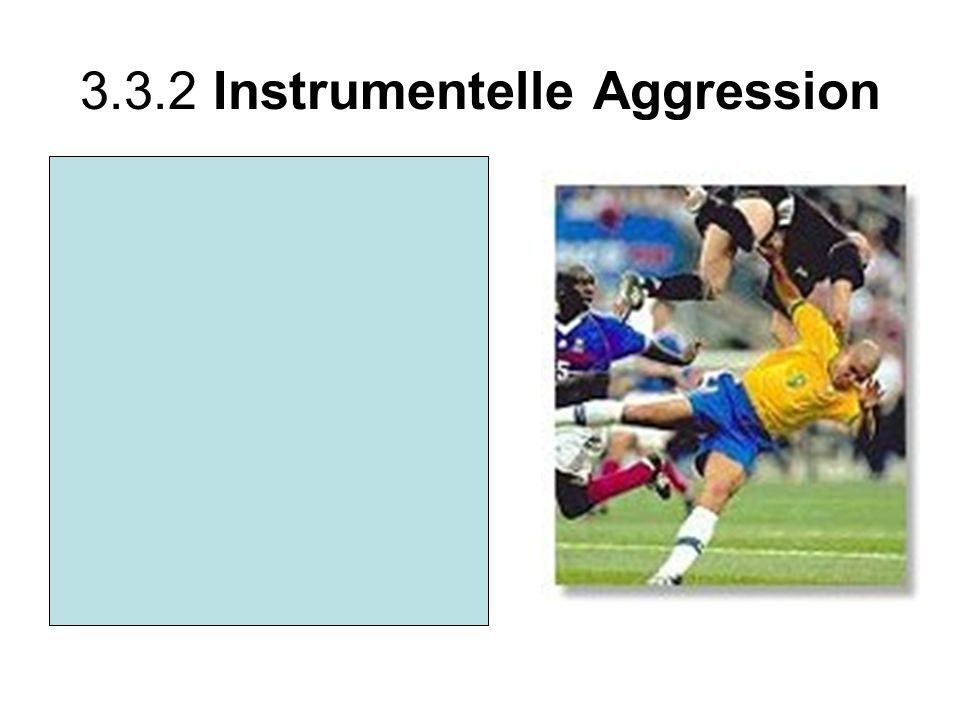 3.3.2 Instrumentelle Aggression