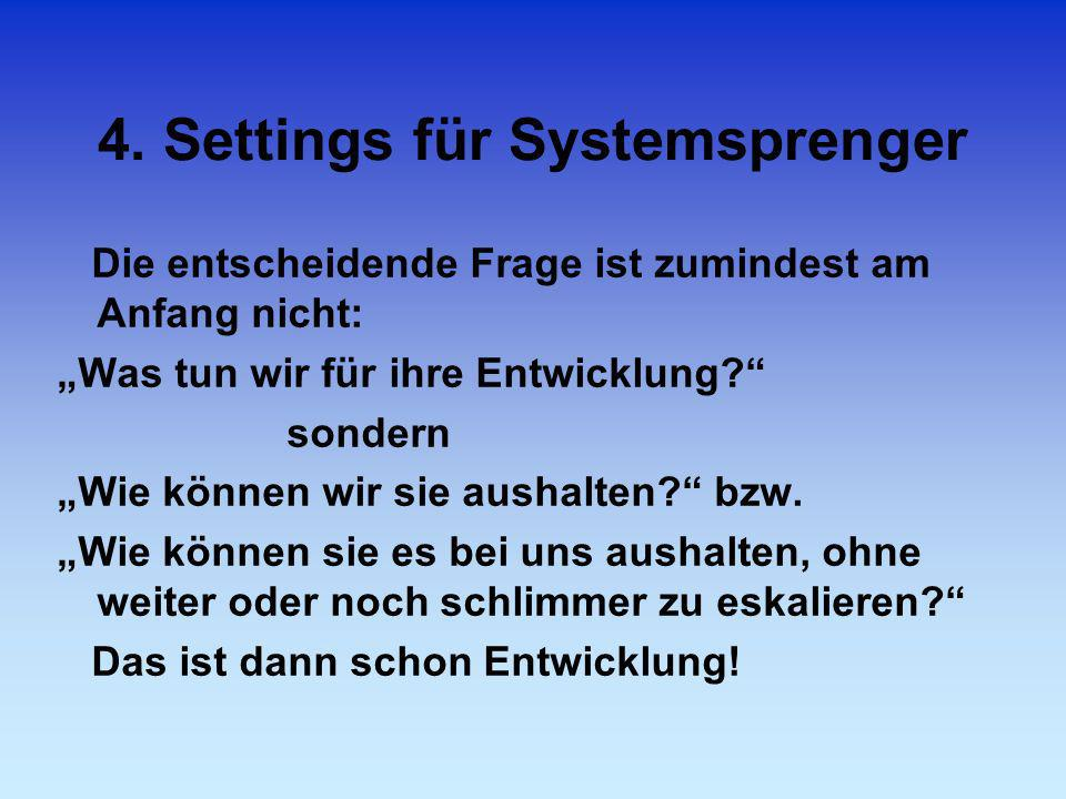 4. Settings für Systemsprenger