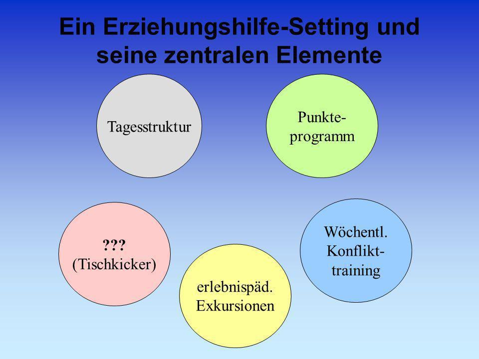 Ein Erziehungshilfe-Setting und seine zentralen Elemente