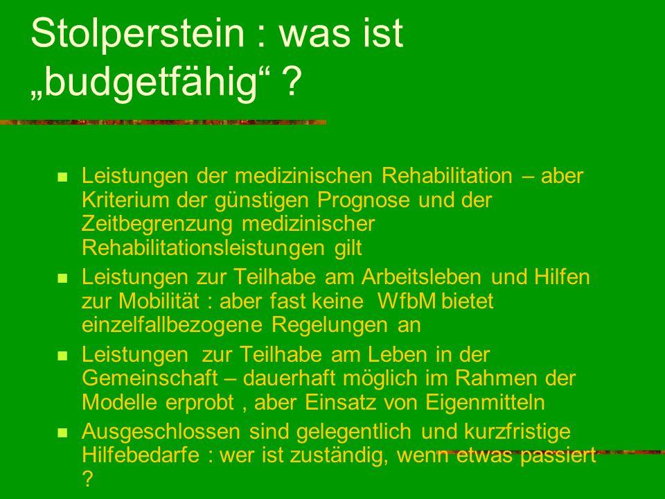 """Stolperstein : was ist """"budgetfähig"""