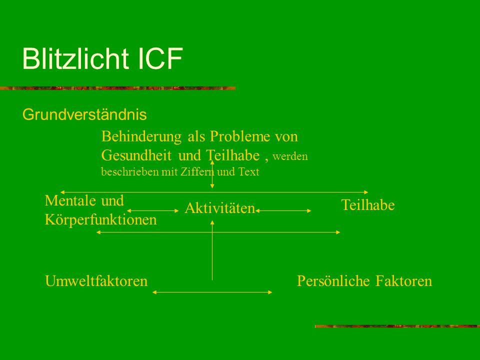 Blitzlicht ICF Grundverständnis