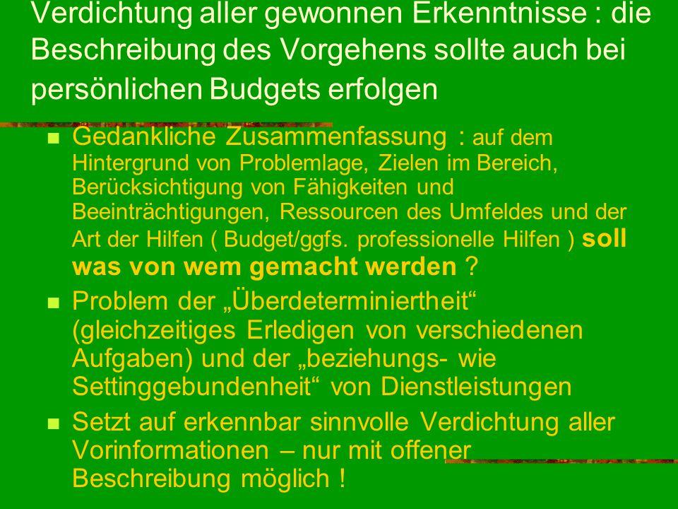 Verdichtung aller gewonnen Erkenntnisse : die Beschreibung des Vorgehens sollte auch bei persönlichen Budgets erfolgen