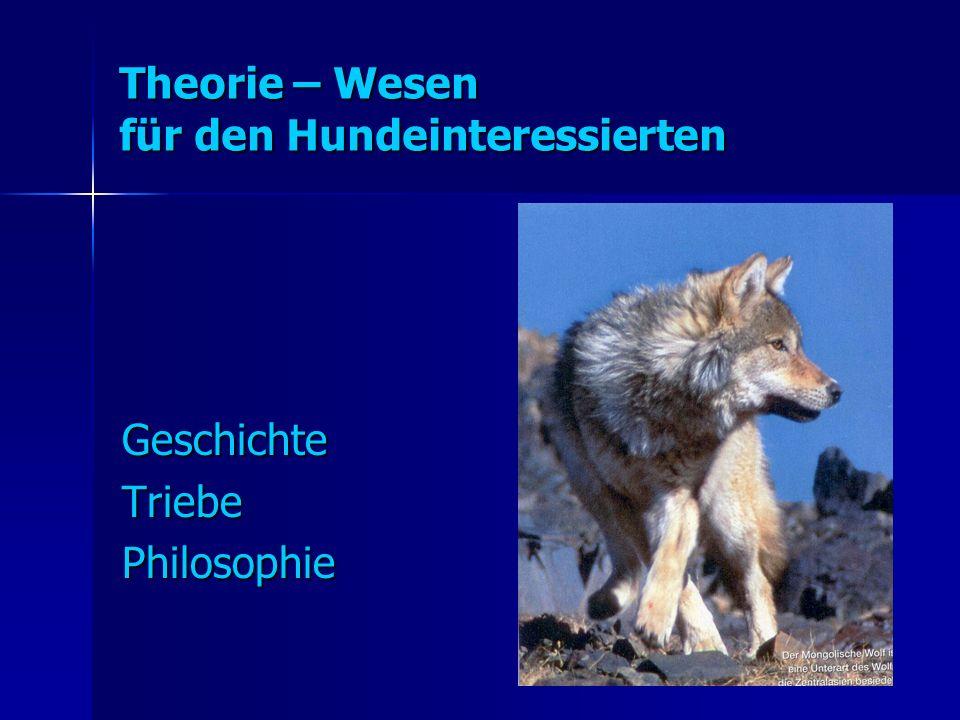 Theorie – Wesen für den Hundeinteressierten