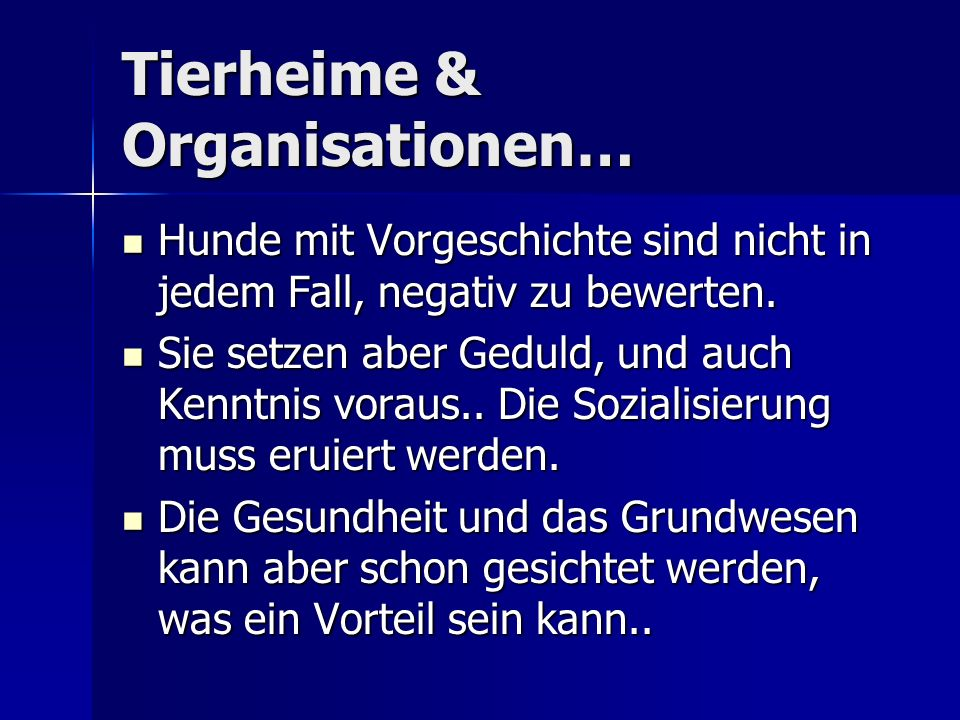 Tierheime & Organisationen…