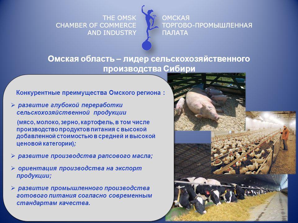 Омская область – лидер сельскохозяйственного производства Сибири