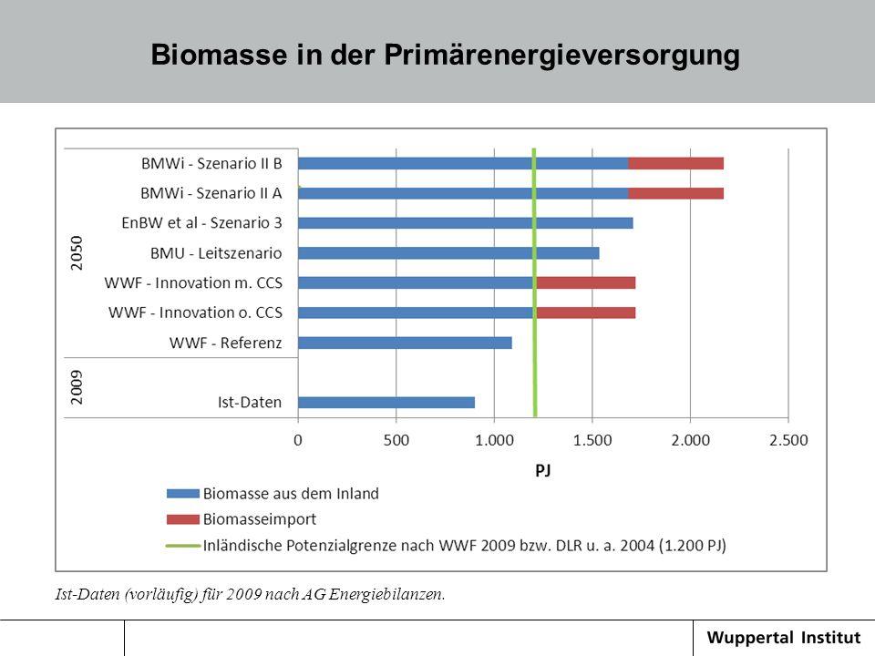 Biomasse in der Primärenergieversorgung