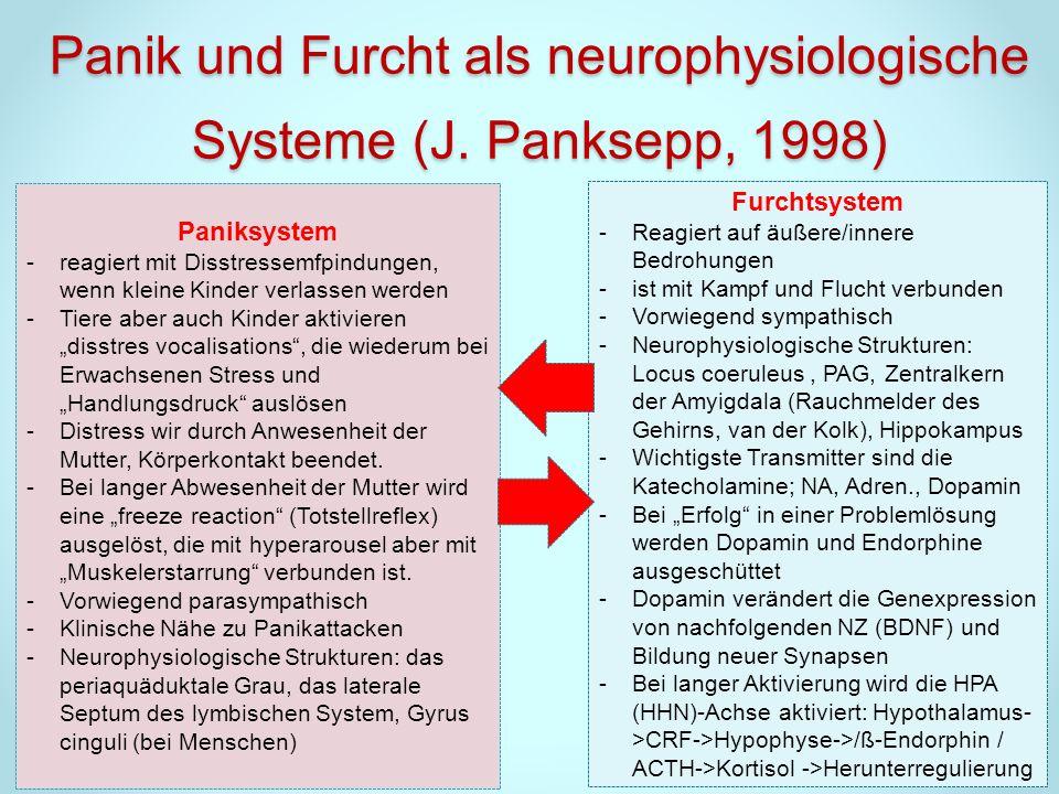 Panik und Furcht als neurophysiologische Systeme (J. Panksepp, 1998)