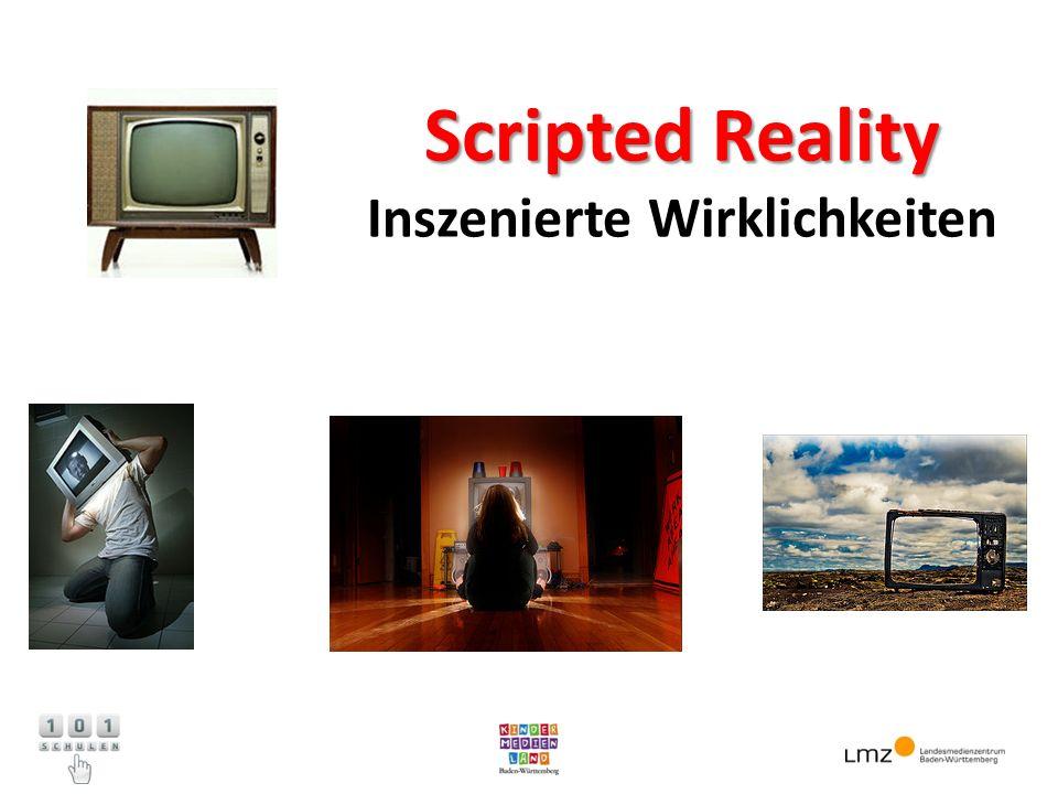 Scripted Reality Inszenierte Wirklichkeiten