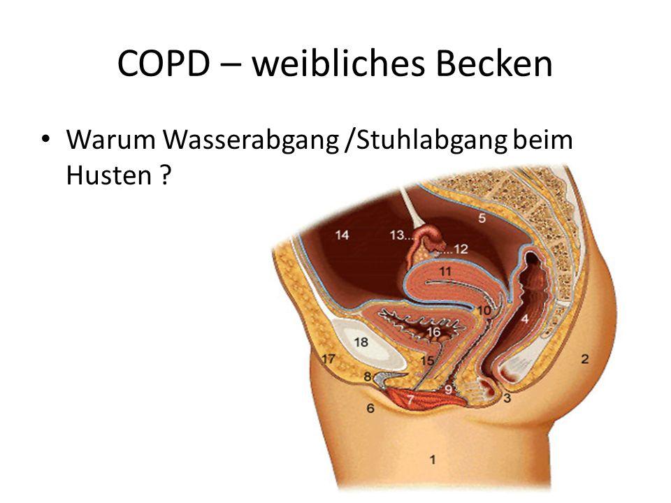 COPD – weibliches Becken