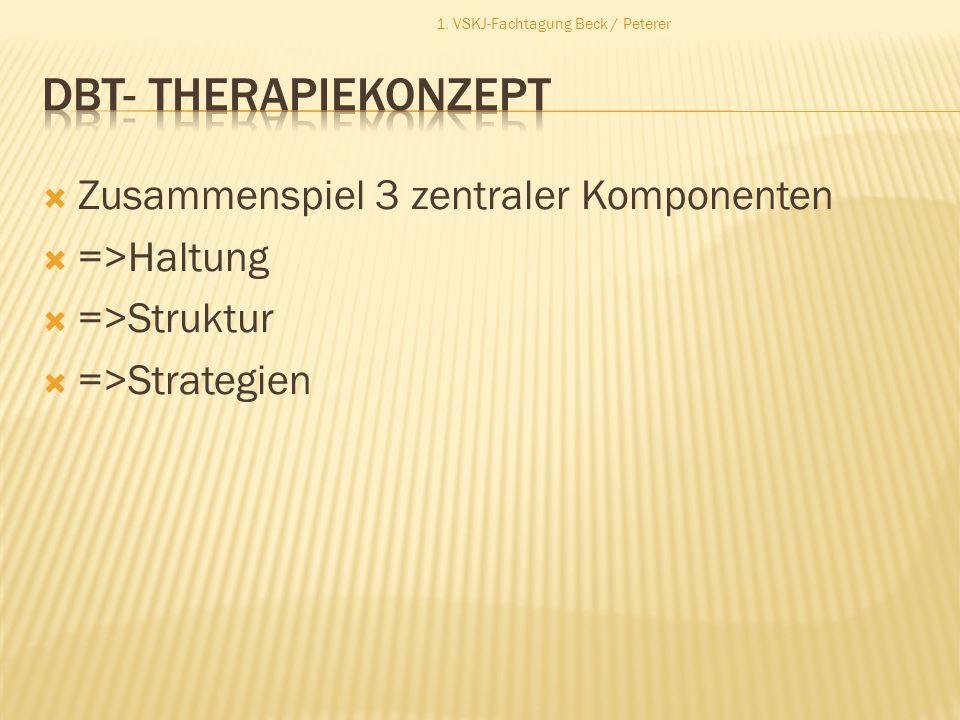 DBT- Therapiekonzept Zusammenspiel 3 zentraler Komponenten