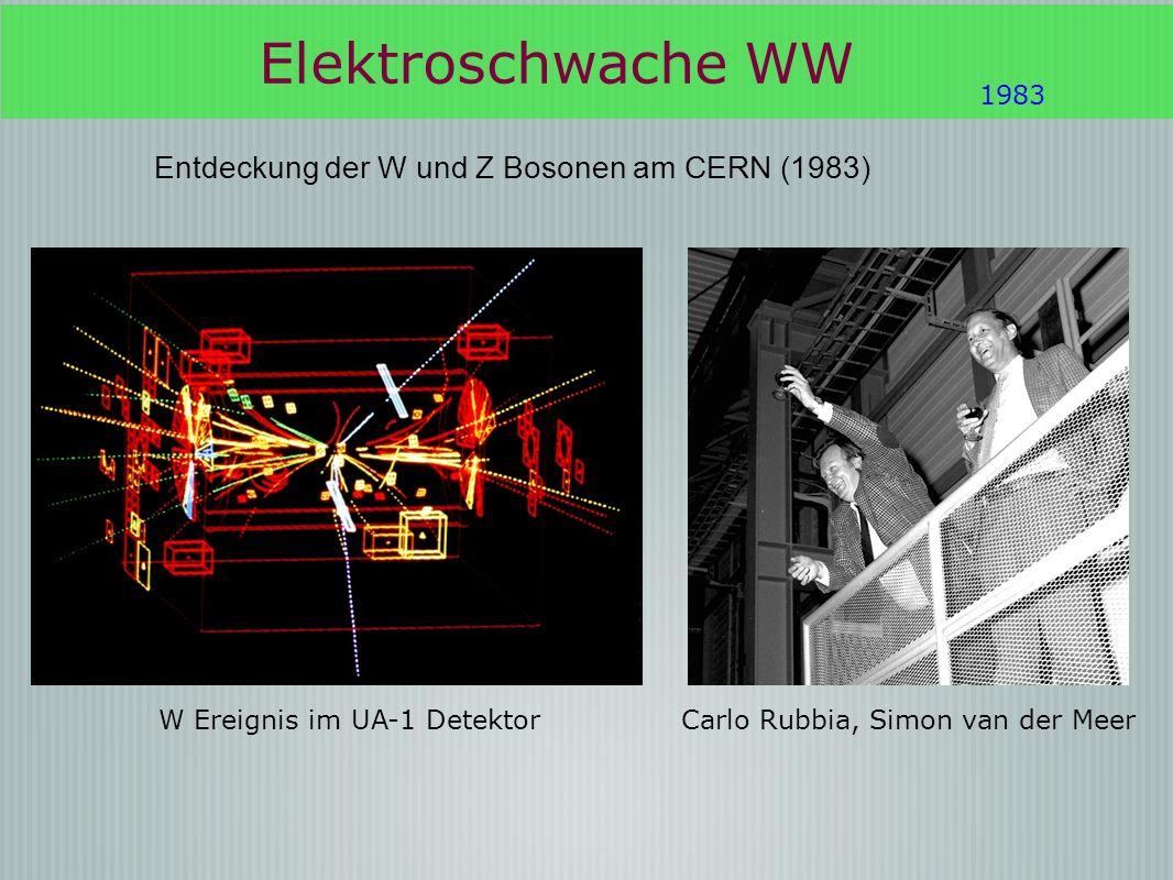 Elektroschwache WW Entdeckung der W und Z Bosonen am CERN (1983) 1983