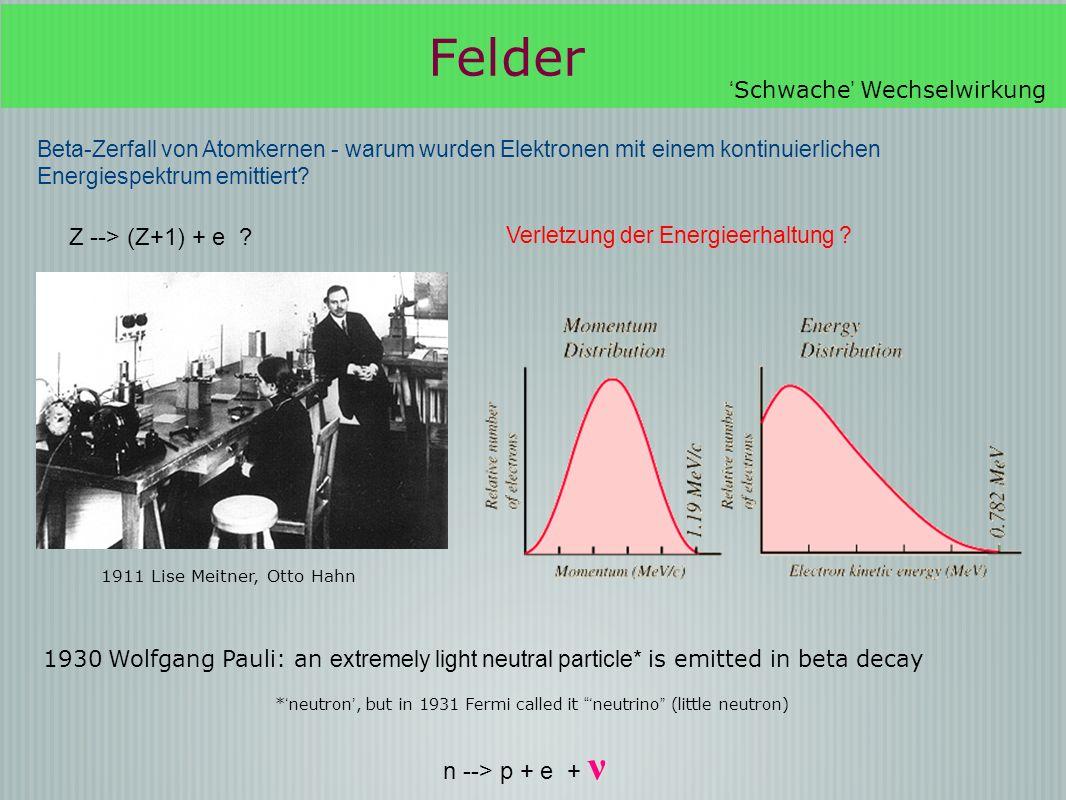 Felder Z --> (Z+1) + e n --> p + e + ν