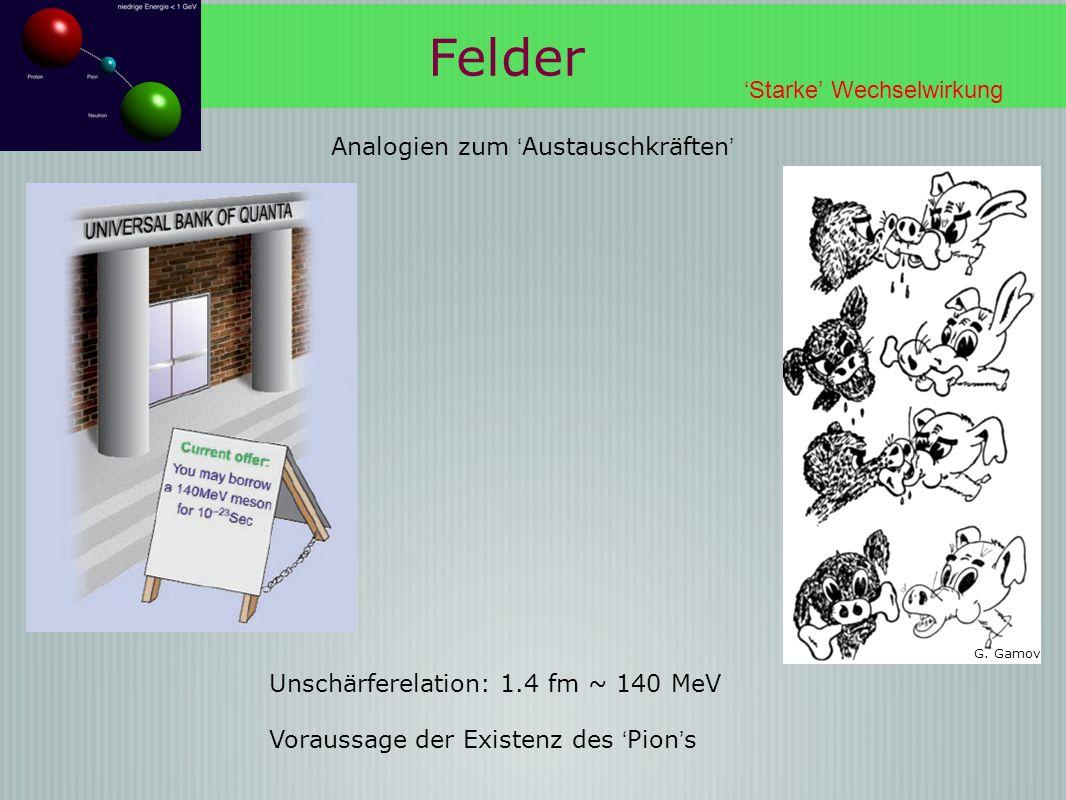 Felder 'Starke' Wechselwirkung Analogien zum 'Austauschkräften'