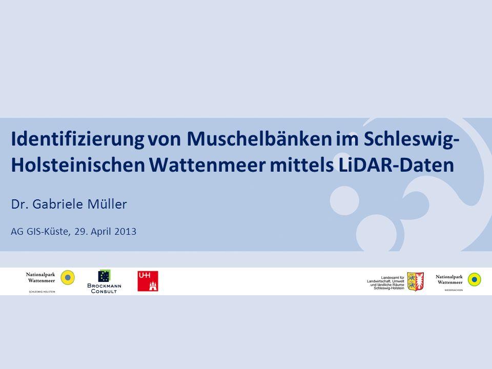 Identifizierung von Muschelbänken im Schleswig-Holsteinischen Wattenmeer mittels LiDAR-Daten
