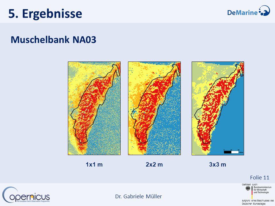 5. Ergebnisse Muschelbank NA03 1x1 m 2x2 m 3x3 m