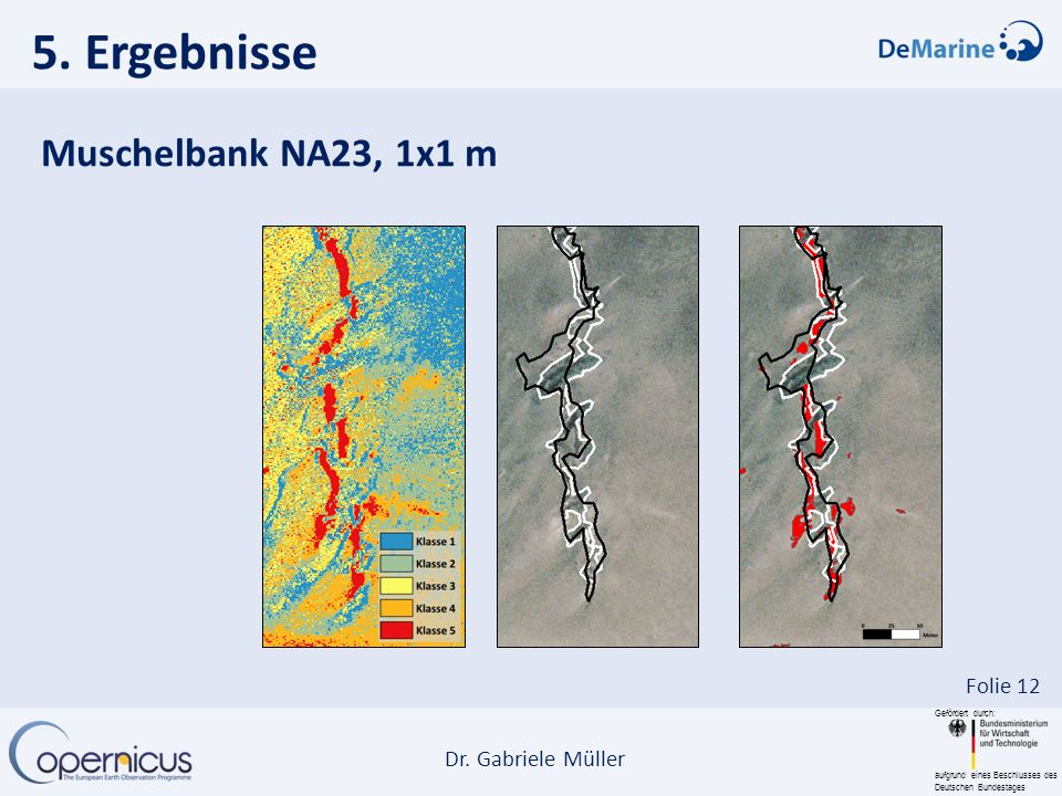 5. Ergebnisse Muschelbank NA23, 1x1 m
