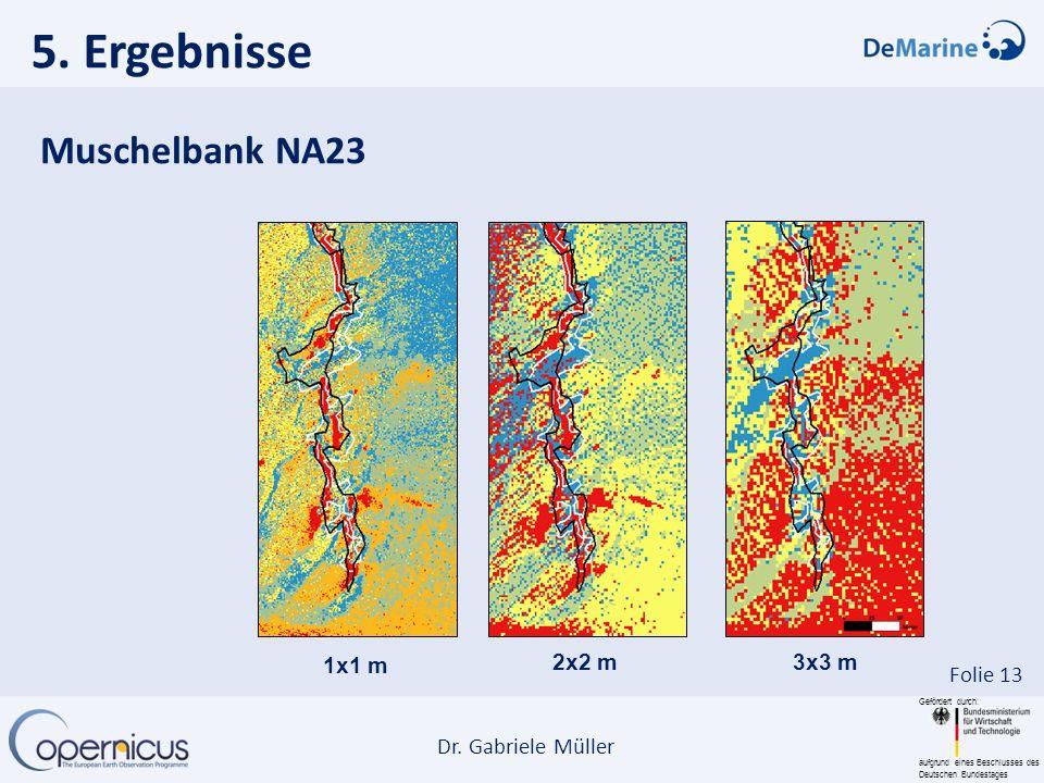 5. Ergebnisse Muschelbank NA23 1x1 m 2x2 m 3x3 m