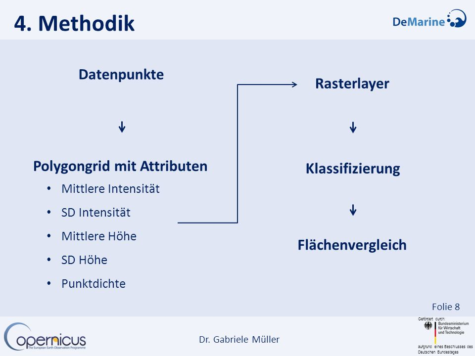 4. Methodik Datenpunkte Rasterlayer Polygongrid mit Attributen