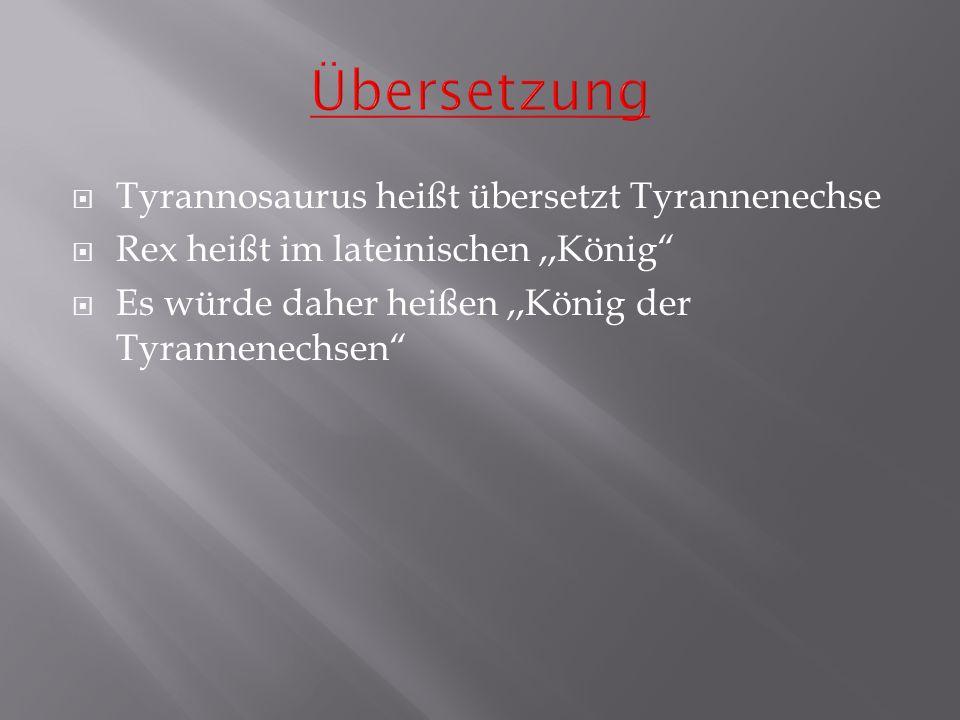 Übersetzung Tyrannosaurus heißt übersetzt Tyrannenechse