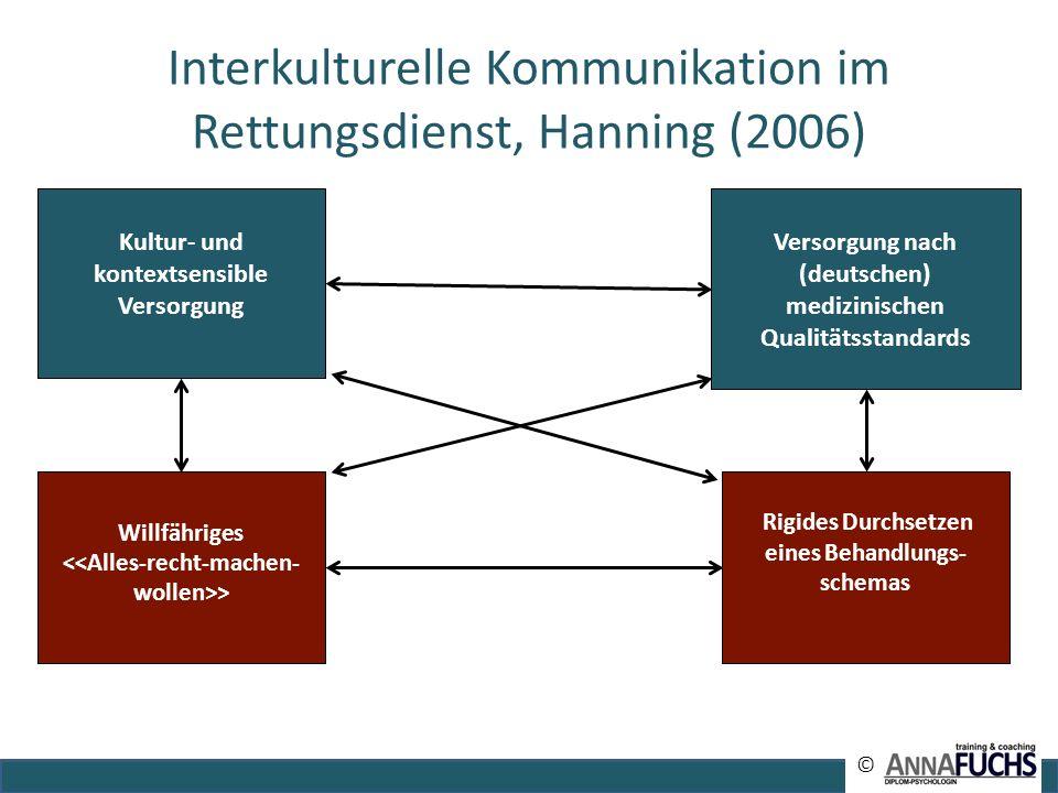 Interkulturelle Kommunikation im Rettungsdienst, Hanning (2006)