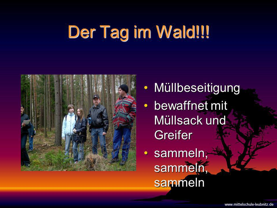 Der Tag im Wald!!! Müllbeseitigung bewaffnet mit Müllsack und Greifer