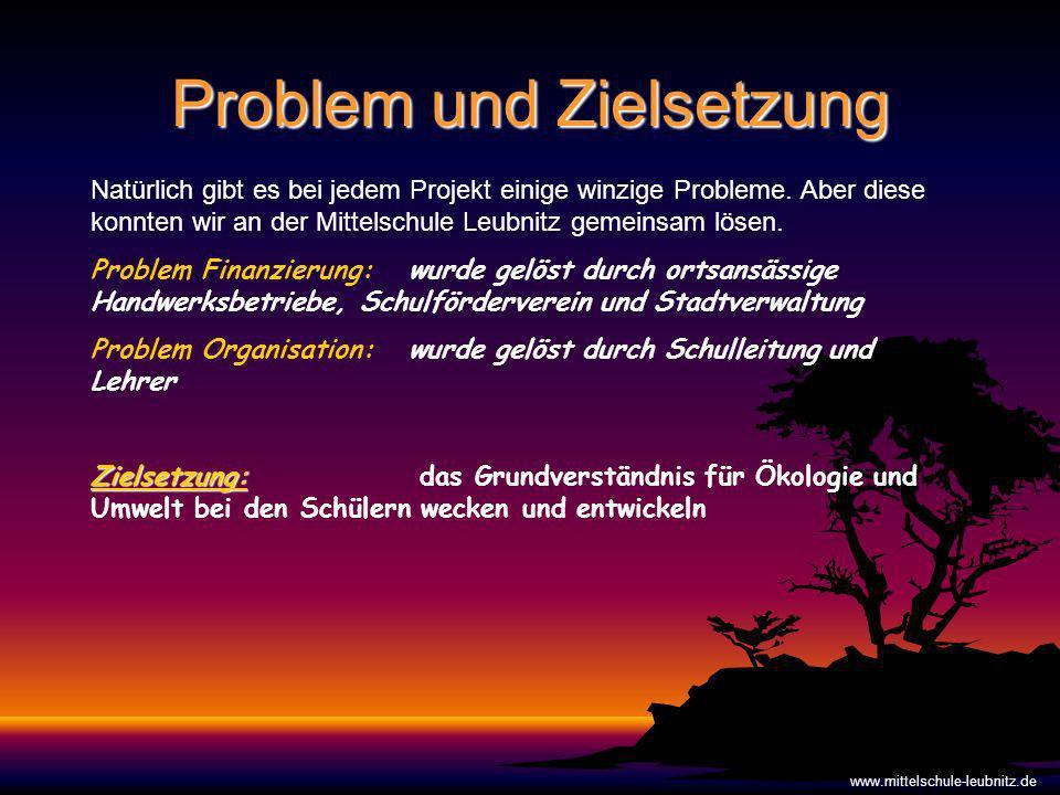 Problem und Zielsetzung