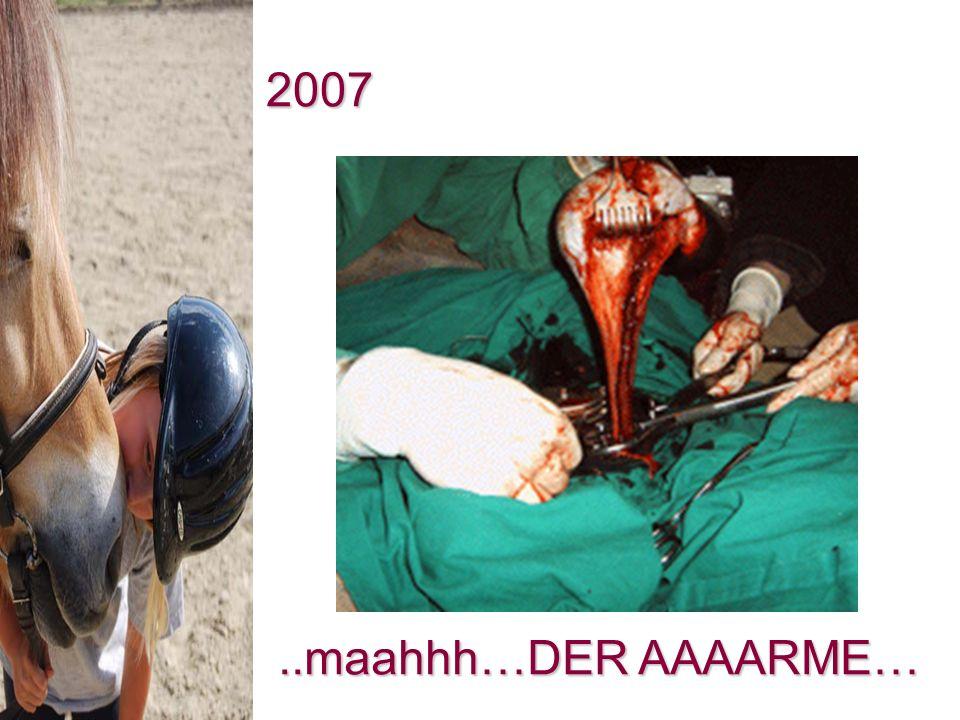 2007 ..maahhh…DER AAAARME…
