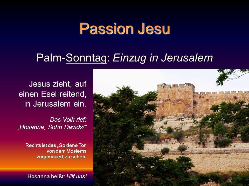 Palm-Sonntag: Einzug in Jerusalem