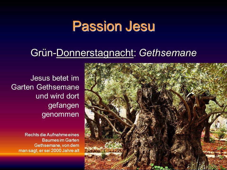 Grün-Donnerstagnacht: Gethsemane