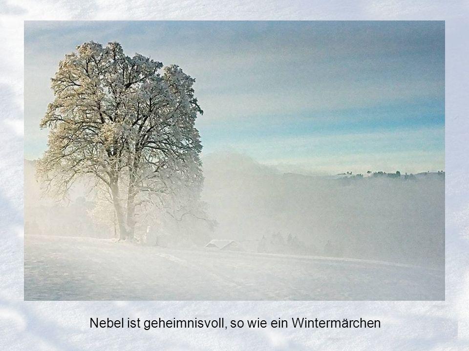 Nebel ist geheimnisvoll, so wie ein Wintermärchen