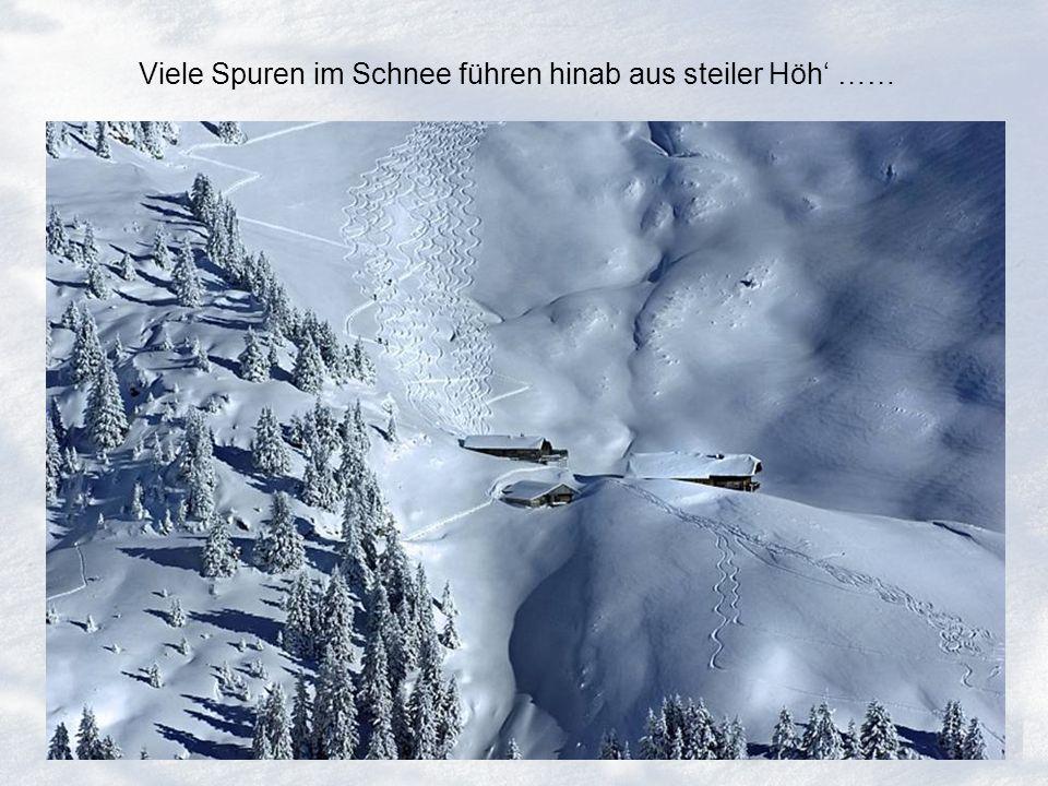 Viele Spuren im Schnee führen hinab aus steiler Höh' ……