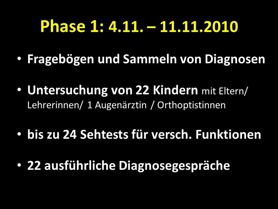 Phase 1: 4.11. – 11.11.2010 Fragebögen und Sammeln von Diagnosen