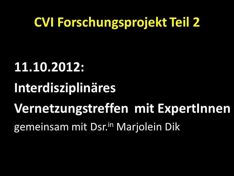 CVI Forschungsprojekt Teil 2