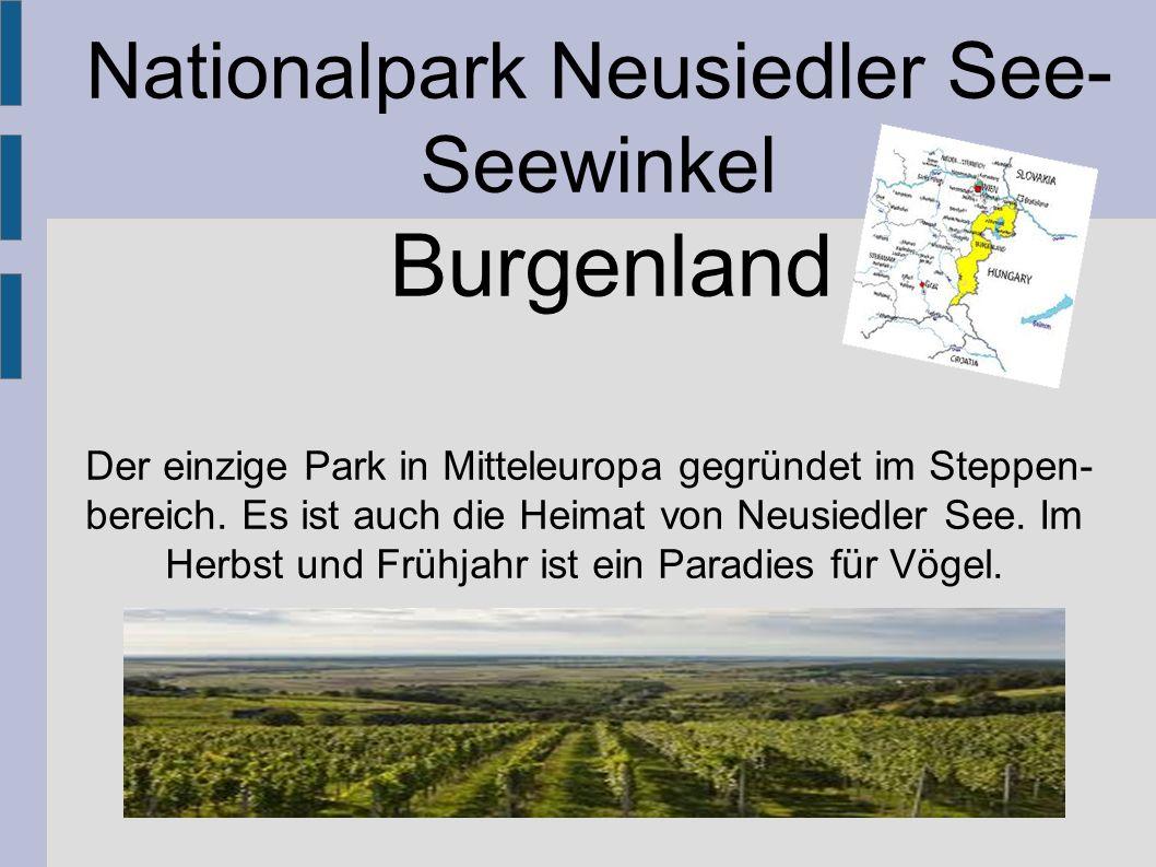 Nationalpark Neusiedler See-Seewinkel