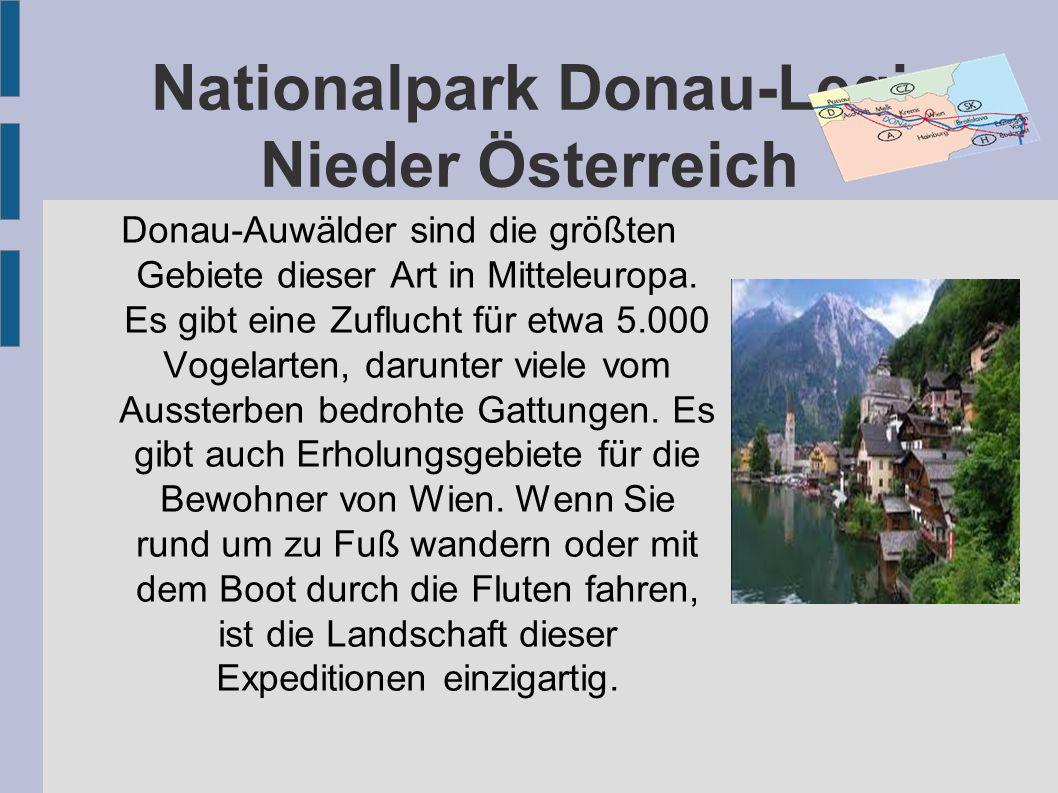 Nationalpark Donau-Legi Nieder Österreich