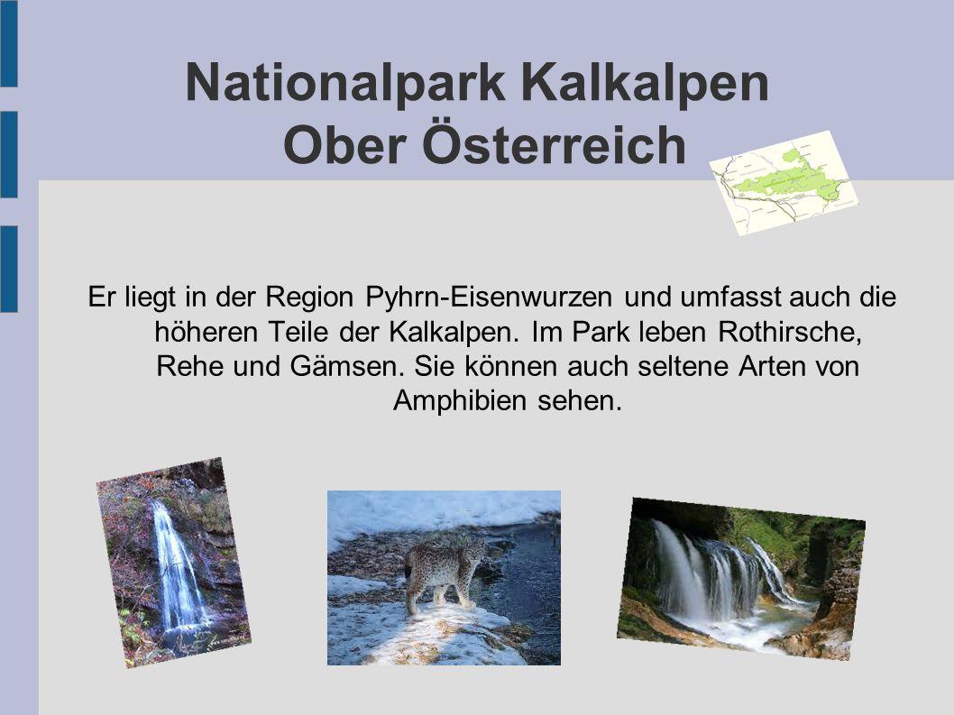 Nationalpark Kalkalpen Ober Österreich