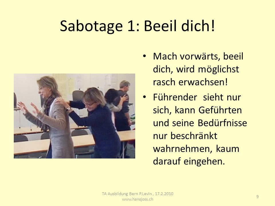 TA Ausbildung Bern P.Levin , 17.2.2010 www.hansjoss.ch