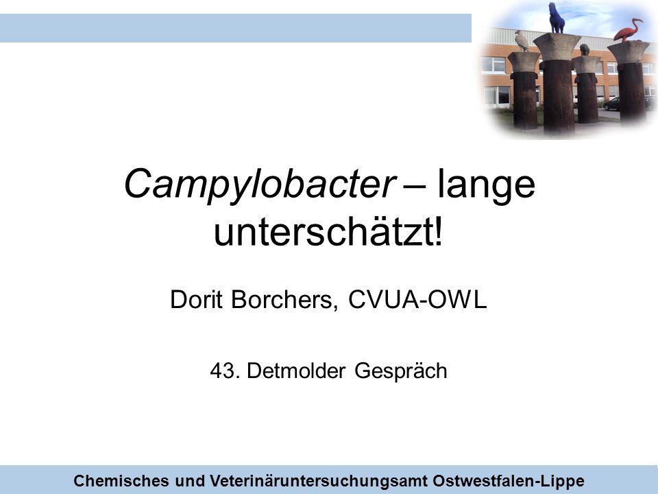 Campylobacter – lange unterschätzt!