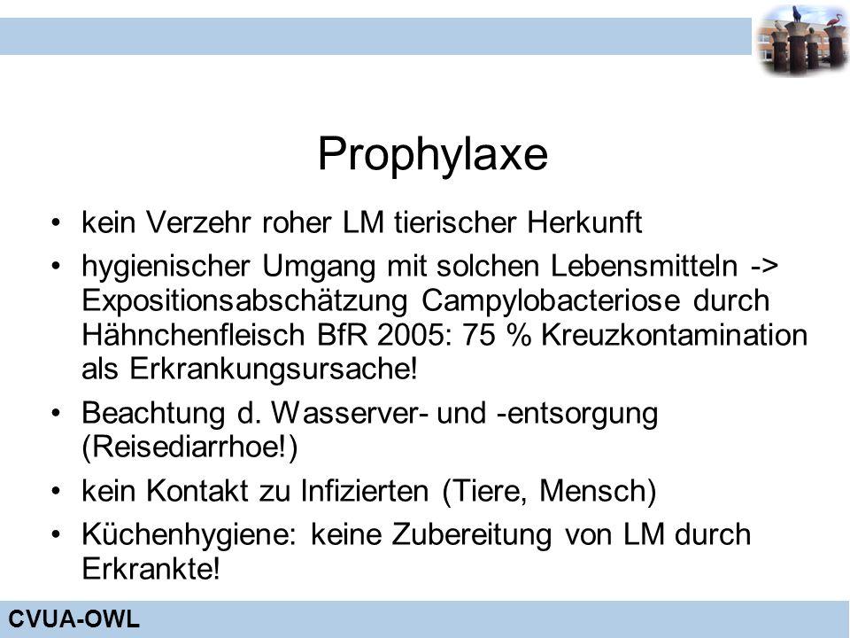 Prophylaxe kein Verzehr roher LM tierischer Herkunft