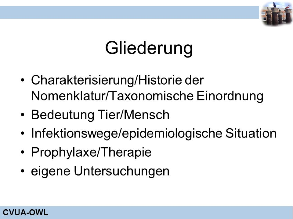 Gliederung Charakterisierung/Historie der Nomenklatur/Taxonomische Einordnung. Bedeutung Tier/Mensch.